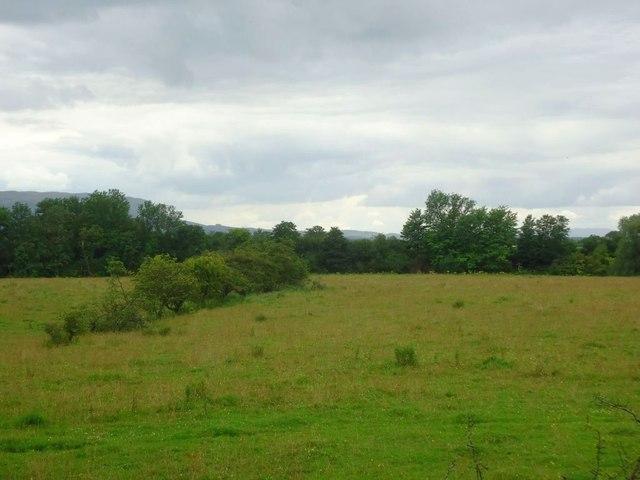 Wester Cornton, rough grazing