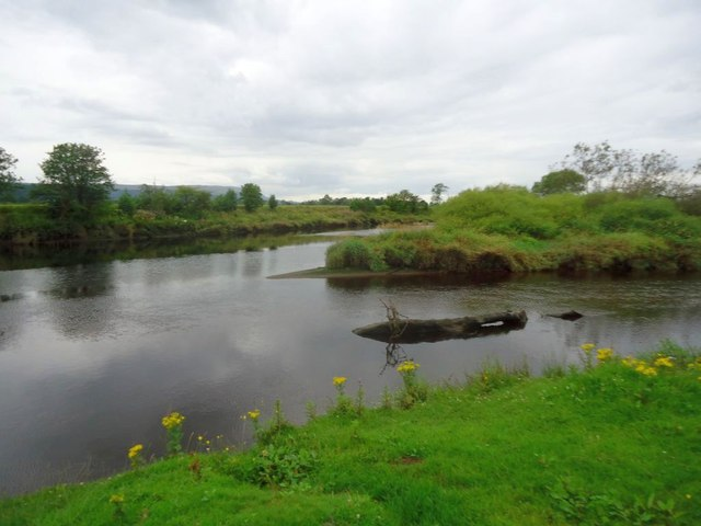 Forth and Allan confluence