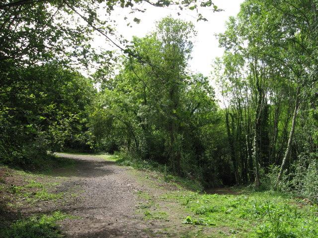Path along course of Wye Valley Railway near Tintern