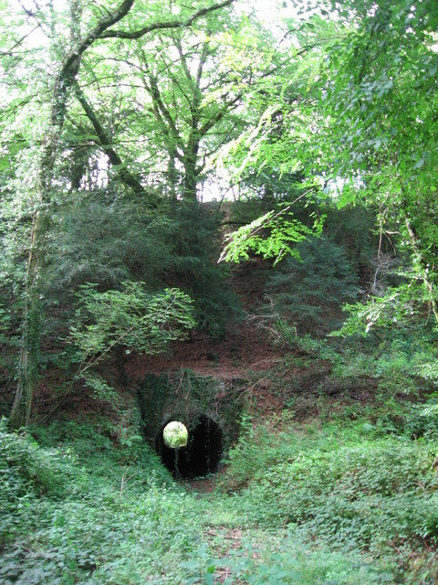 Tunnel beneath disused railway line near Tintern Quarry
