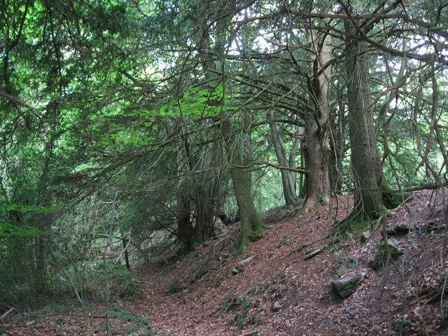 Beside Offa's Dyke