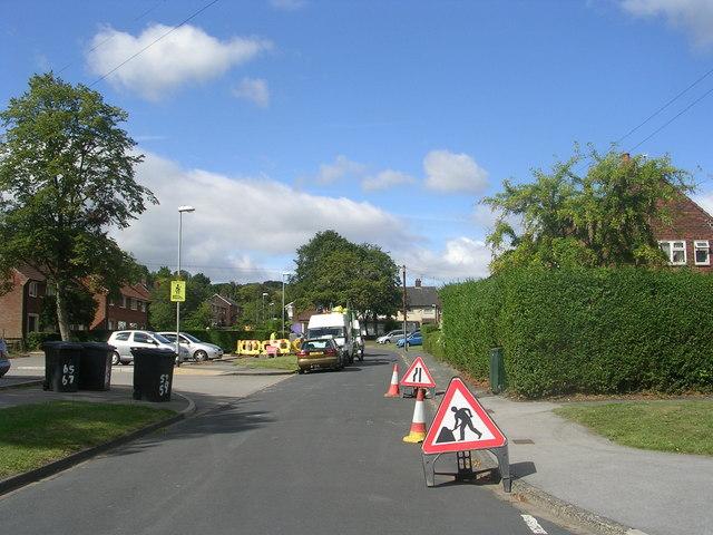 Stonebridge Grove - viewed from Stonebridge Approach