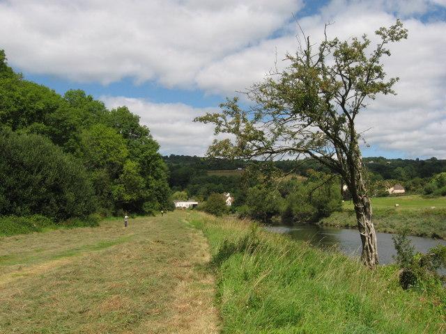 Riverside walk beside the Wye near Tintern