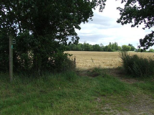 Footpath To Westthorpe Lodge Farm