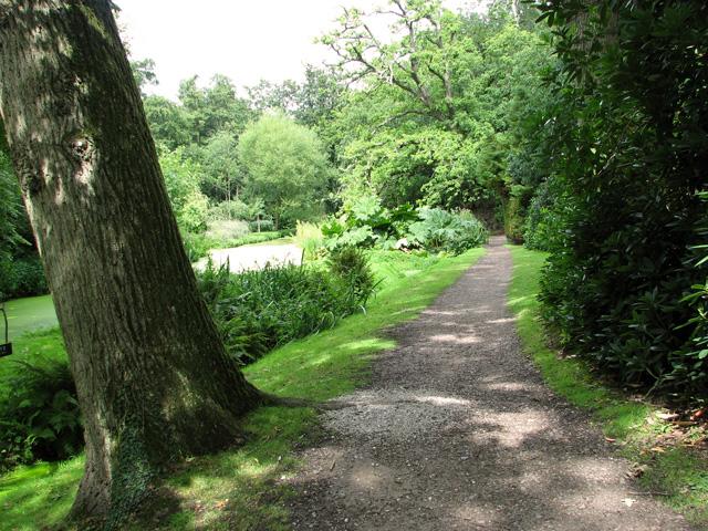 Path in Fairhaven Water garden, South Walsham