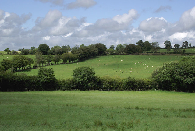 Farmland north-west of Olmarch, Ceredigion