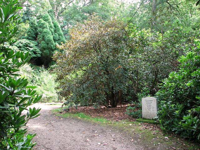Pets' gravestone, Fairhaven Water Garden