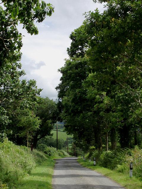 Narrow lane to Olmarch, Ceredigion