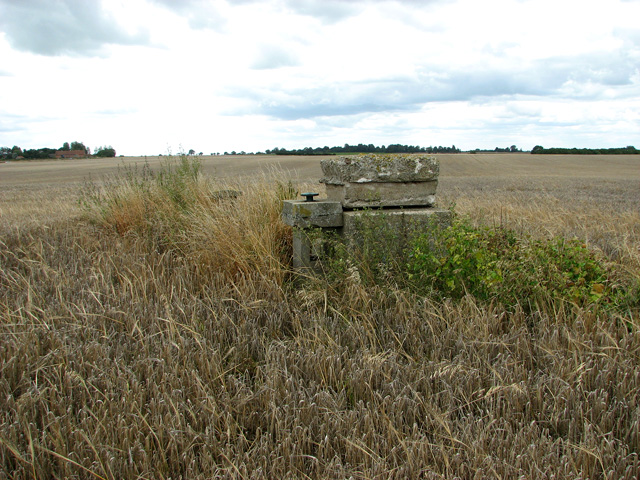 Martham ROC post in field south of Church Road, Repps with Bastwick