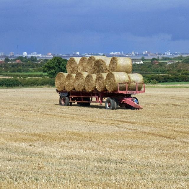 Bales on Trailer near Barrow Mere