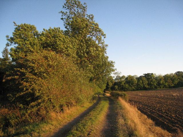 Farm track by Hornby Wood