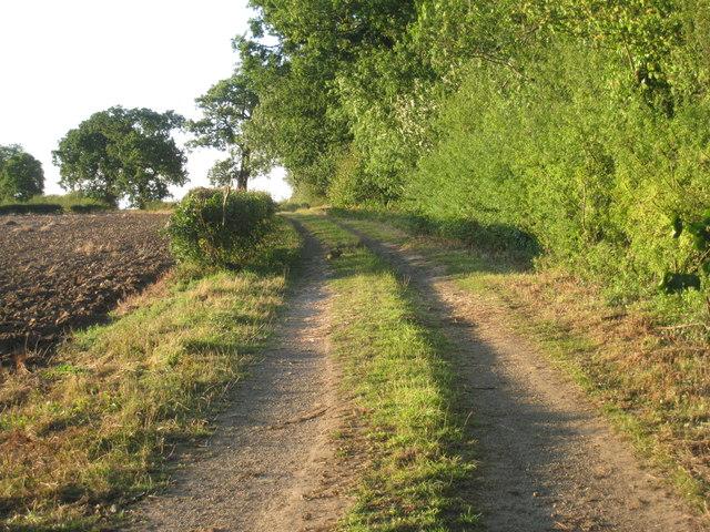 Farm track by Hornby Wood (2)
