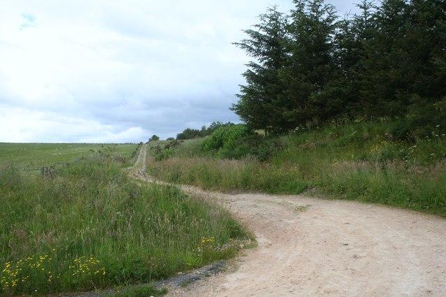 Tomnoan Track