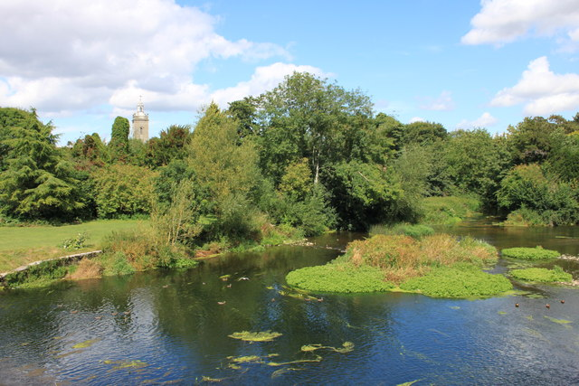 River Stour at Blandford Forum
