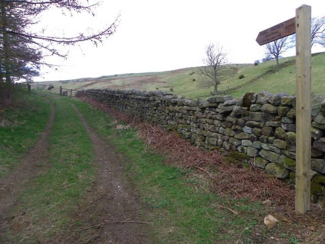 Footpath near Ilton