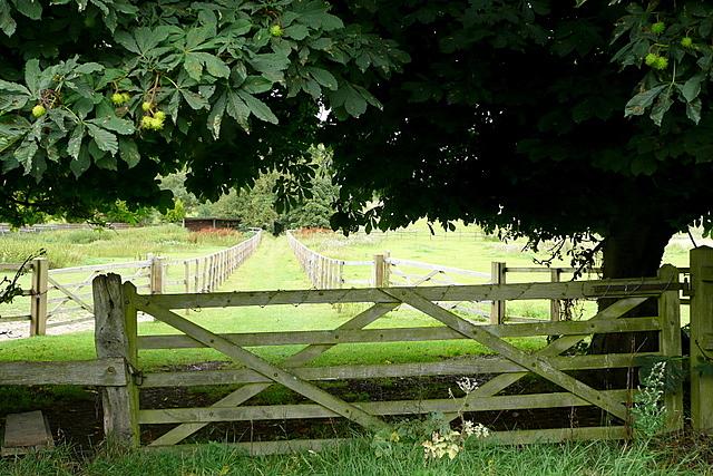 Footpath at Hillgrove Farm