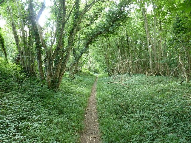 Bridleway parallel to Selhurstpark Road
