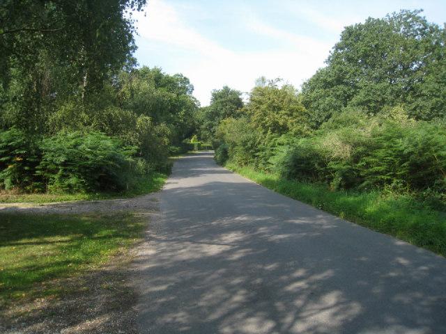 Briff Lane