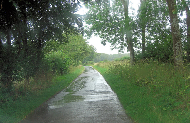 Lane south of Warren Bottom Copse