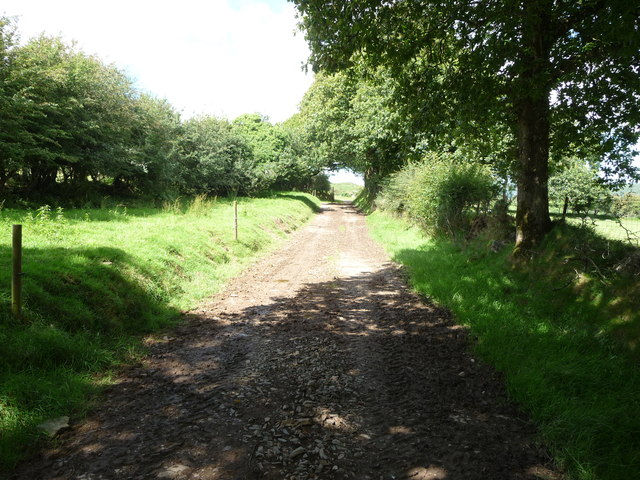 Farm track near Mount Pleasant, Treffgarne