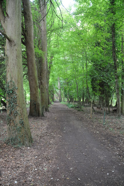 Thames Path north of Maidenhead
