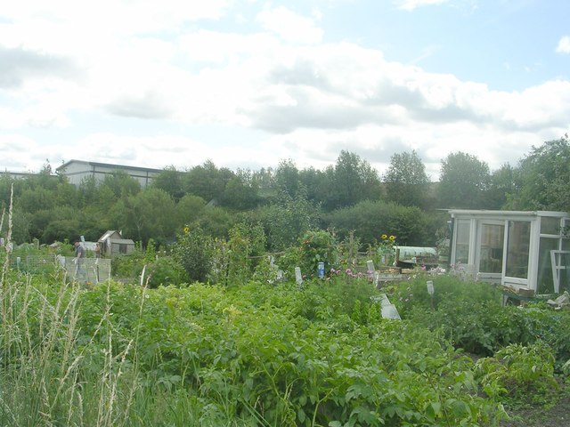 Allotments - Cobden Street