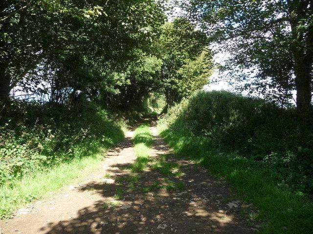Field access track near Brimaston