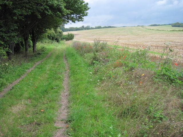 Footpath towards Warren Barn on Great Down
