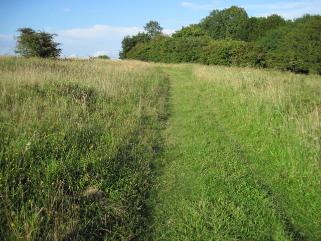Footpath on Bignor Hill
