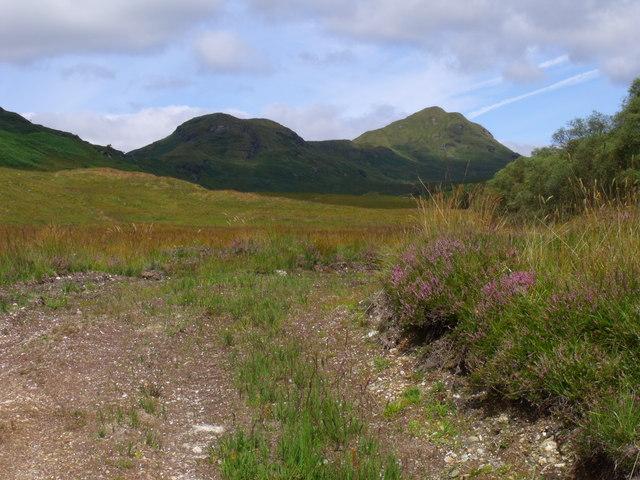 Rough track west of Strone Burn near Loch Katrine