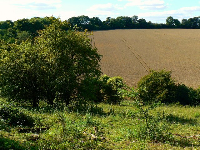 Farmland north-west of a byway near Weston