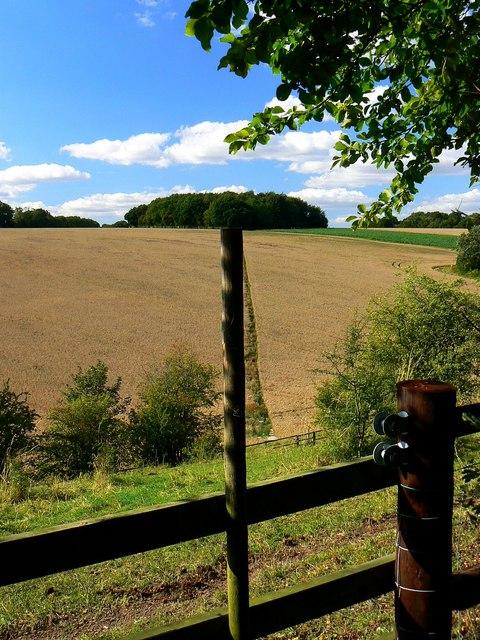 Stile and footpath, near Weston