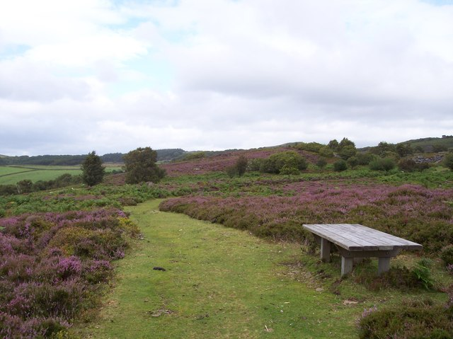 Bench at viewing point on Birk Bank