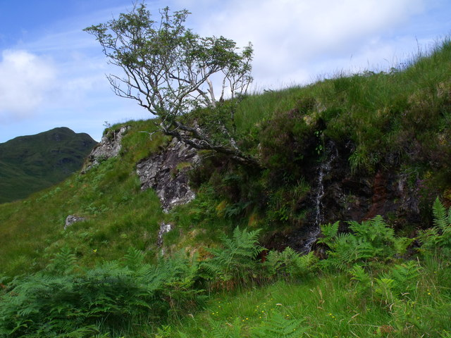 Wee waterfall in the drainage system of Strone Burn on the west slopes of Meall Gaothach