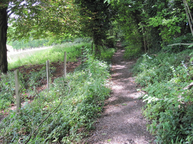 Footpath from Twyford to Hensting Lane
