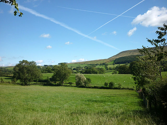 Pasture by Twiston Lane, Downham