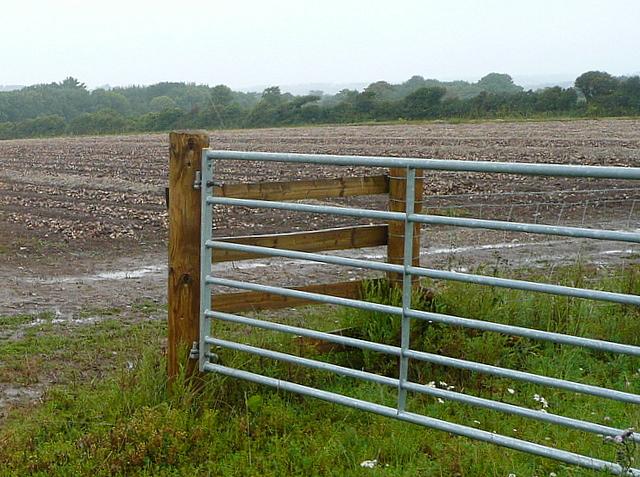 Farmland off Tredrea Lane