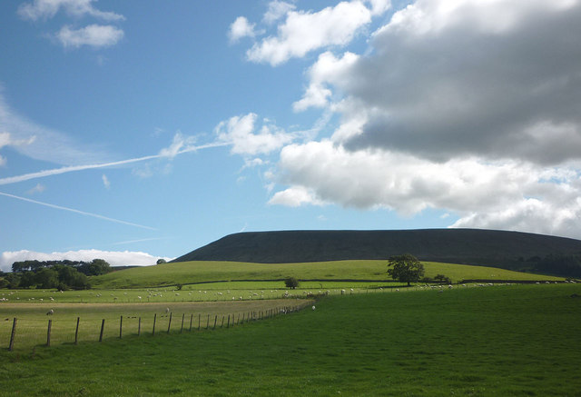 Pastures by Twiston Lane