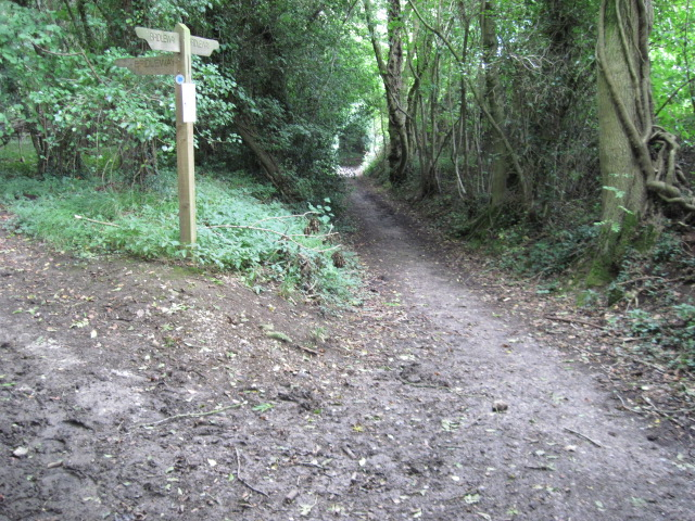 Footpath towards Marwell at junction with Water Lane