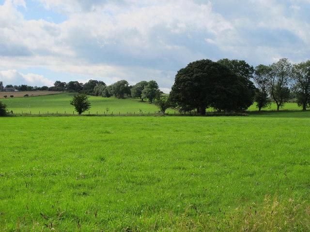 Pastures near Smelting Syke