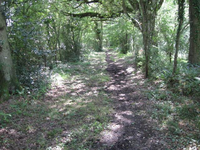 Footpath towards Mortimers Lane