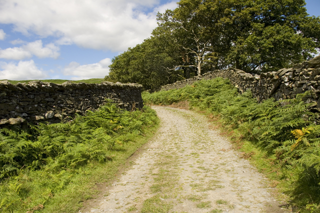 Lane to High Ickenthwaite