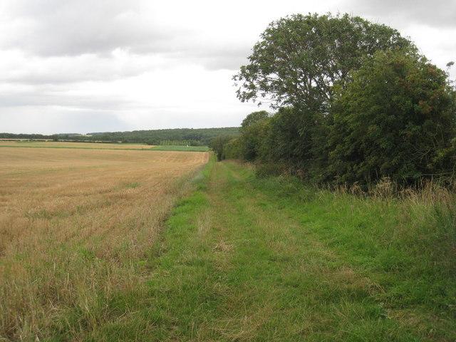 The bridleway to Lake Farm