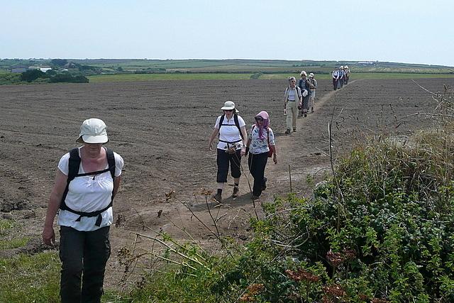 Footpath towards Mill Bay