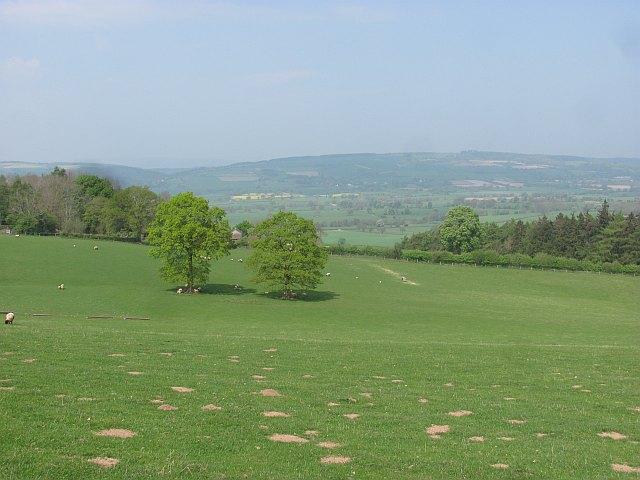 Pasture, Sutton Hill