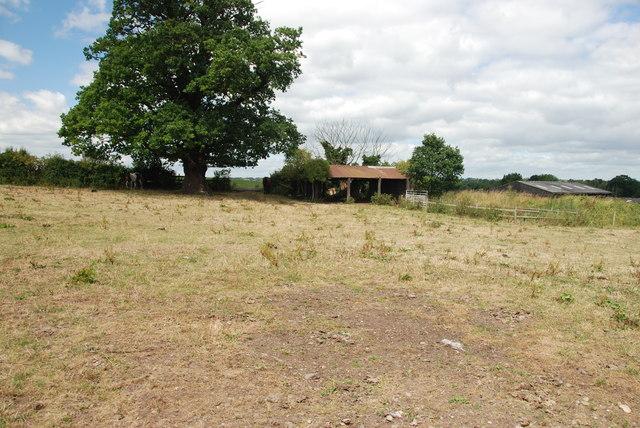 Horse Pasture & Barn, Blithford Farm