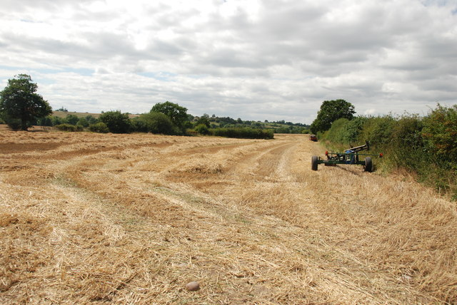 Harvest  in Progress, Orange Lane, Bromley Hurst