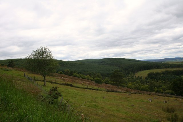 Suie Hillside
