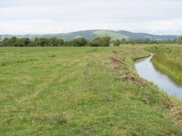 Allerton Moor Rhyne