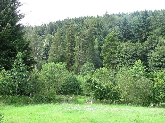 Glen of Drumtochty